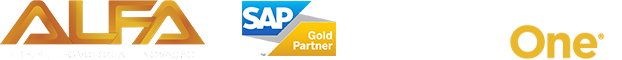 Consultoria SAP Business One